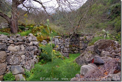5311 La Pasadera-Roque Carnero