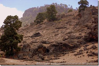 3627 El Juncal-Roque Cofre