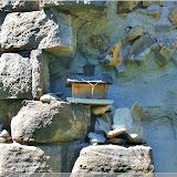 Vogelhäuschen am Weiherturm