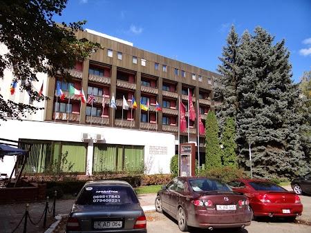 Jolly Arlon Chisinau
