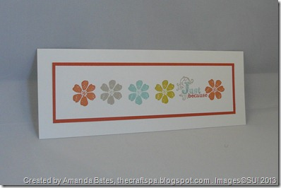 Patterned Occasions, The Craft Spa, SAB 2013, Stampin Up, SU (16)
