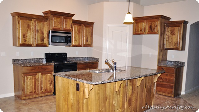 How to paint your kitchen cabinets professionally all things thrifty solutioingenieria Gallery