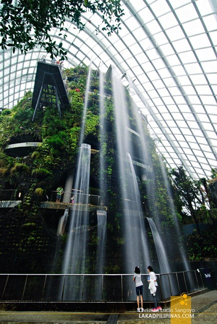 The Cloud Forest Waterfalls at Gardens by the Bay