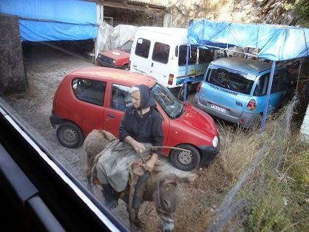 01. Femeie pe magar in Grecia.JPG