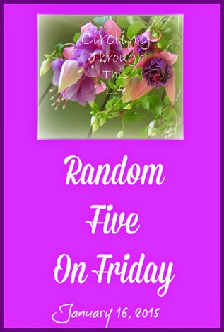 Random Five on Friday from Tess at Circling Through This Life