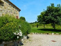 Beringhe Casa Varno_Colle di Val d'Elsa_10
