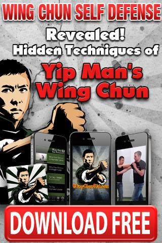 Wing Tsun Kung Fu Wu Shu - screenshot
