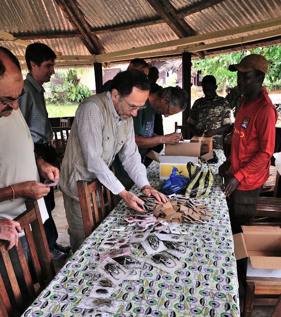 Rencontre avec des collecteurs locaux. Ebogo (Cameroun), 29 avril 2013. Photo : Daniel Milan