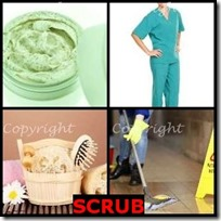 SCRUB- 4 Pics 1 Word Answers 3 Letters