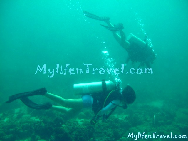 Koh Lipe Diving 22