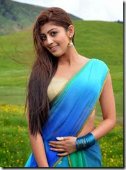 pranitha_gorgeous_photo