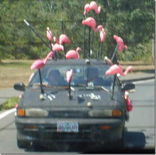 funny_and_weird_vehicles_66
