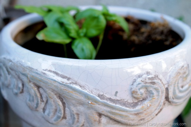Lifestyle Crafts Herb Pot via homework - carolynshomework (1)