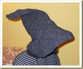 Lewis' Wizard Hat side view