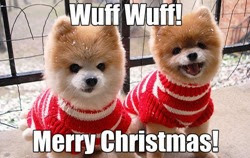 wuff wuff christmas dogs