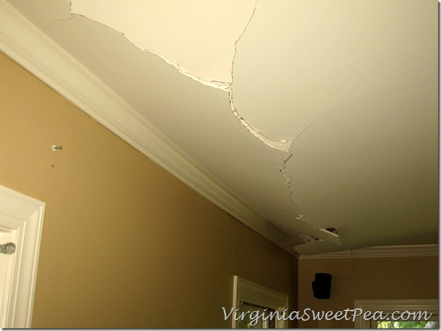 Family Room Ceiling Damage