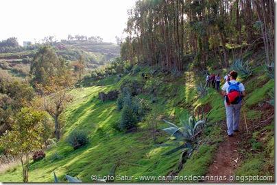 7168 Los Tiles-Firgas(Barranco Los Pajaritos)