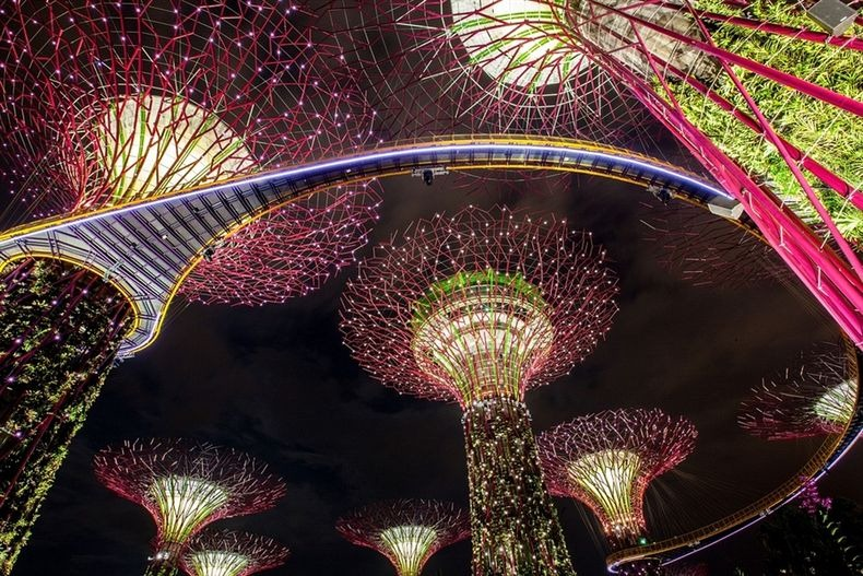 supertrees-singapore-0