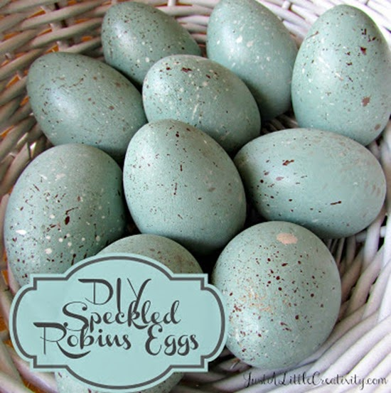 robins eggs cover