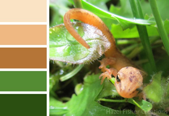 018 colour palette newt