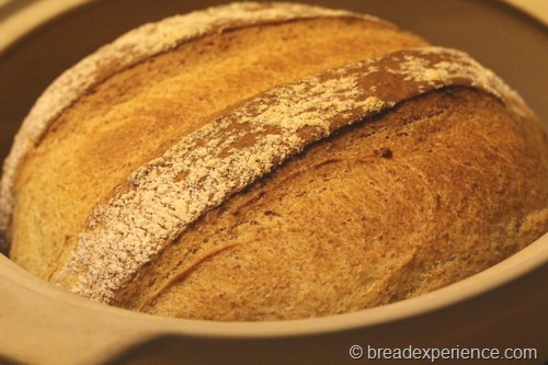 shepherds-bread_0022