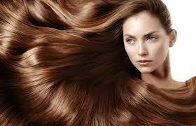 اطعمة تقوي الشعر وتحفزه علي النمو  - أخبار وطني