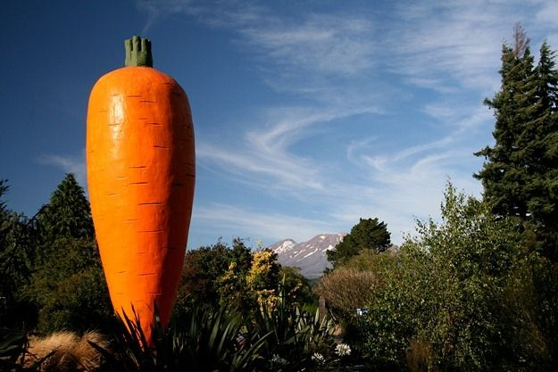 Giant Carrot of Ohakune