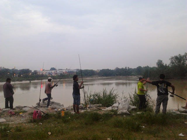 patin sungai langat
