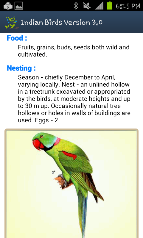 essay on parrot bird in marathi Marathi essay about parrot, तोता के बारे में मराठी निबंध, , , translation, human translation, automatic translation.