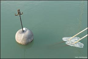Lac Léman Genève - Glace-17.jpg