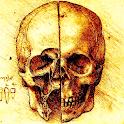 BoneCast logo