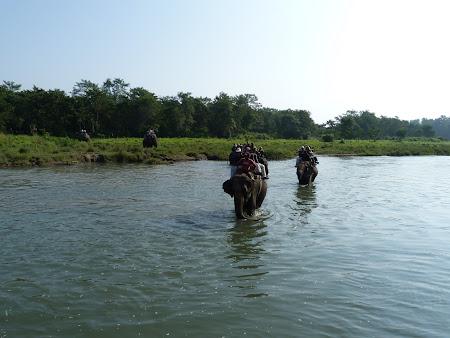 safari pe elefanti