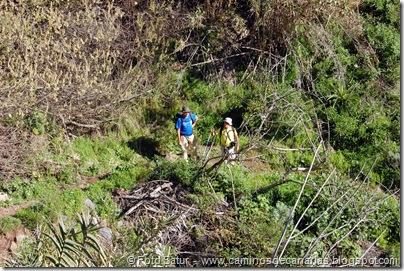 4896 Las Lagunetas-Los Arbejales