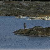 Totensee, Grimselpass