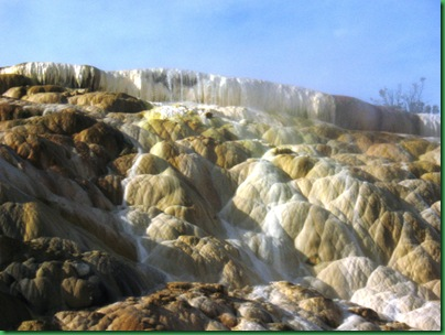 Mammoth Hot Springs Terraces (265)