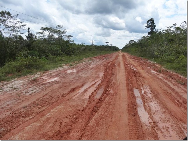 BR-319_Humaita_Manaus_Day_2_DSC05405