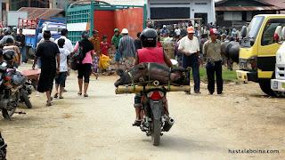 Si vas a ir más lejos, mejor cargas el cerdo en la moto.