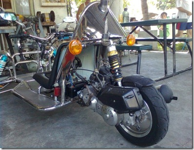 Trike for the Disabled3