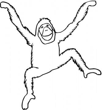 dibujos de orangutanes para colorear