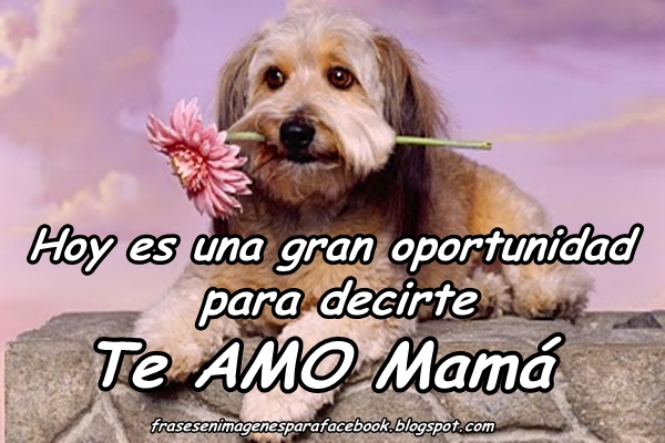 Frases De Amor A Una Madre Quotes Links