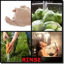 RINSE- 4 Pics 1 Word Answers 3 Letters