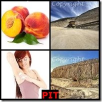 PIT- 4 Pics 1 Word Answers 3 Letters