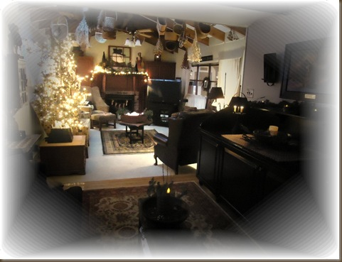 Den and Family room 2012