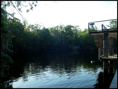 Monday at Wakulla Springs 148