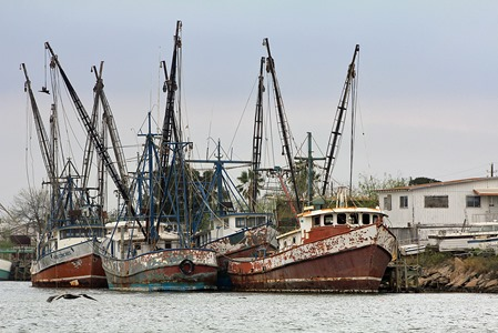 Port of Brownsville Tour Shrimp boat 20133