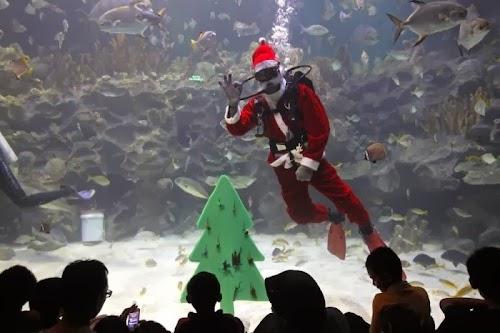 world_celebrating_christmas_09.jpg