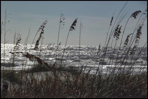 Cold Tuesday at Hunting Island 007