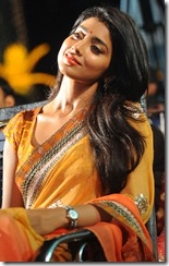 Shriya_Saran_gorgeous_pic