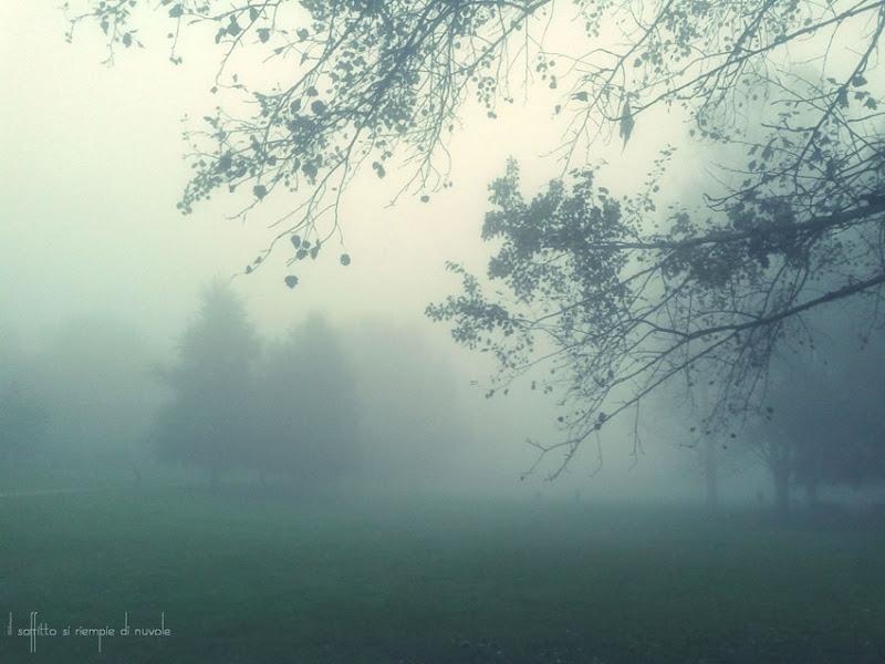 nebbia shhh