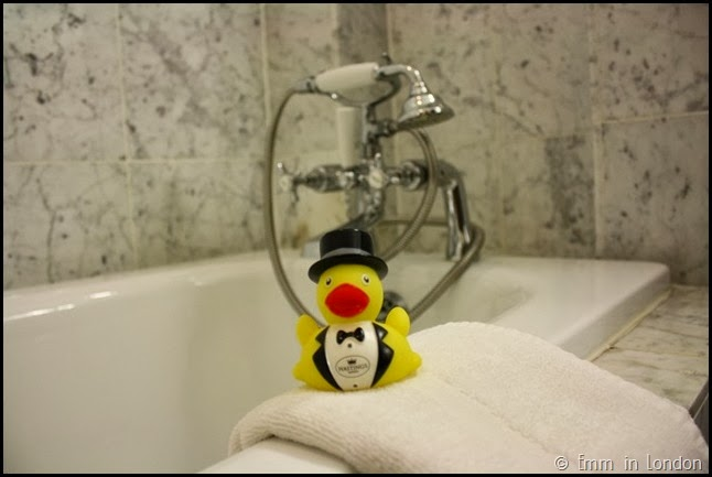 Hastings Hotel ducky